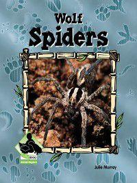 Animal Kingdom Set 2: Wolf Spiders, Julie Murray