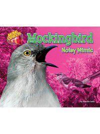 Animal Loudmouths: Mockingbird, Natalie Lunis