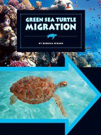 Animal Migrations: Green Sea Turtle Migration, Rebecca Hirsch