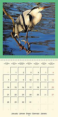 Animal nature (Wall Calendar 2019 300 × 300 mm Square) - Produktdetailbild 1