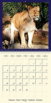 Animal nature (Wall Calendar 2019 300 × 300 mm Square) - Produktdetailbild 2
