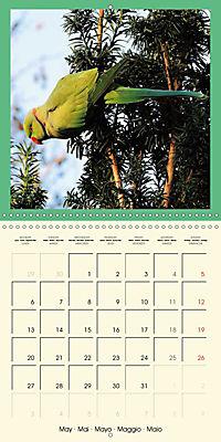 Animal nature (Wall Calendar 2019 300 × 300 mm Square) - Produktdetailbild 5