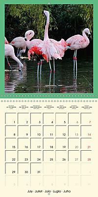 Animal nature (Wall Calendar 2019 300 × 300 mm Square) - Produktdetailbild 7