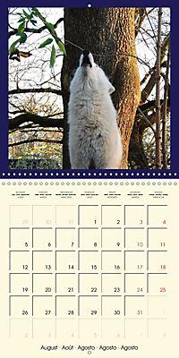 Animal nature (Wall Calendar 2019 300 × 300 mm Square) - Produktdetailbild 8
