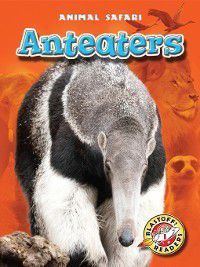 Animal Safari: Anteaters, Megan Borgert-Spaniol
