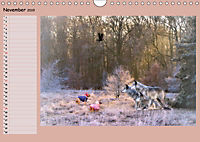 Animalische Absurditäten mit Planer (Wandkalender 2019 DIN A4 quer) - Produktdetailbild 11