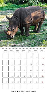 Animals from the Zoo (Wall Calendar 2019 300 × 300 mm Square) - Produktdetailbild 3