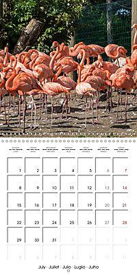 Animals from the Zoo (Wall Calendar 2019 300 × 300 mm Square) - Produktdetailbild 7