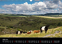 Animals in the countryside (Wall Calendar 2019 DIN A3 Landscape) - Produktdetailbild 7