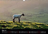 Animals in the countryside (Wall Calendar 2019 DIN A3 Landscape) - Produktdetailbild 5