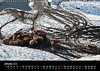 Animals in the countryside (Wall Calendar 2019 DIN A3 Landscape) - Produktdetailbild 1