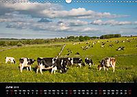 Animals in the countryside (Wall Calendar 2019 DIN A3 Landscape) - Produktdetailbild 6