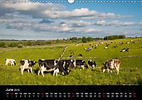 Animals in the countryside (Wall Calendar 2019 DIN A3 Landscape) - Produktdetailbild 6