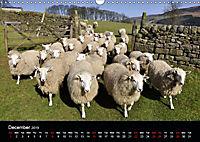 Animals in the countryside (Wall Calendar 2019 DIN A3 Landscape) - Produktdetailbild 12