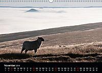 Animals in the countryside (Wall Calendar 2019 DIN A3 Landscape) - Produktdetailbild 11