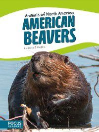 Animals of North America: American Beavers, Alicia Z. Klepeis