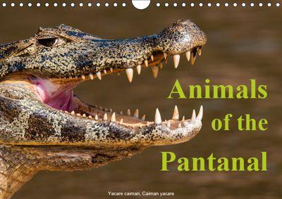 Animals of the Pantanal / UK Version (Wall Calendar 2019 DIN A4 Landscape), Juergen Woehlke