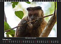 Animals of the Pantanal / UK Version (Wall Calendar 2019 DIN A4 Landscape) - Produktdetailbild 2