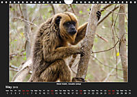 Animals of the Pantanal / UK Version (Wall Calendar 2019 DIN A4 Landscape) - Produktdetailbild 5