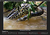 Animals of the Pantanal / UK Version (Wall Calendar 2019 DIN A4 Landscape) - Produktdetailbild 8