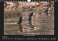 Animals of the Pantanal / UK Version (Wall Calendar 2019 DIN A4 Landscape) - Produktdetailbild 7