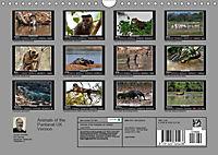 Animals of the Pantanal / UK Version (Wall Calendar 2019 DIN A4 Landscape) - Produktdetailbild 13