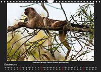 Animals of the Pantanal / UK Version (Wall Calendar 2019 DIN A4 Landscape) - Produktdetailbild 10