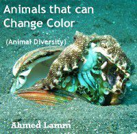 Animals that can Change Color (Animal Diversity), Ahmed Lamm