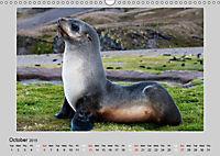 Antarctica Wildlife / UK-Version (Wall Calendar 2019 DIN A3 Landscape) - Produktdetailbild 10