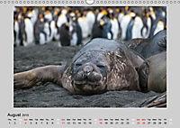 Antarctica Wildlife / UK-Version (Wall Calendar 2019 DIN A3 Landscape) - Produktdetailbild 8