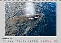 Antarctica Wildlife / UK-Version (Wall Calendar 2019 DIN A3 Landscape) - Produktdetailbild 12