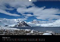 Antarktische Impressionen (Wandkalender 2019 DIN A3 quer) - Produktdetailbild 2