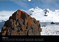Antarktische Impressionen (Wandkalender 2019 DIN A3 quer) - Produktdetailbild 3