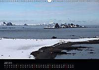 Antarktische Impressionen (Wandkalender 2019 DIN A3 quer) - Produktdetailbild 7
