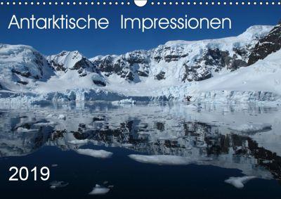Antarktische Impressionen (Wandkalender 2019 DIN A3 quer), Sabine Geschke