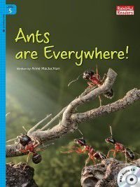 Ants are Everywhere!, Anne Maclachlan