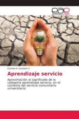 Aprendizaje servicio, Carmen A. Guevara V.
