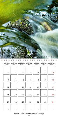 AQUA Ines Mondon Mark James Ford (Wall Calendar 2019 300 × 300 mm Square) - Produktdetailbild 3