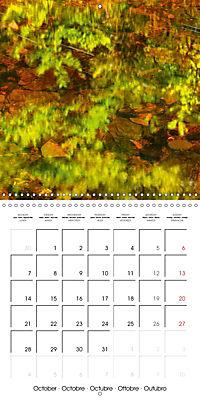 AQUA Ines Mondon Mark James Ford (Wall Calendar 2019 300 × 300 mm Square) - Produktdetailbild 10