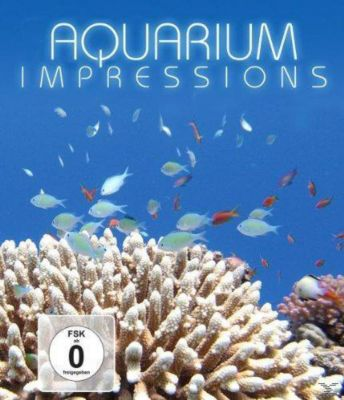 AquariumImpressions, Special Interest