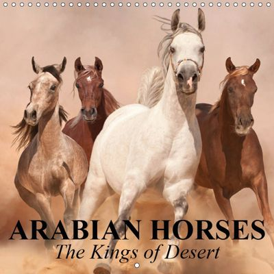 Arabian Horses - The Kings of Desert (Wall Calendar 2019 300 × 300 mm Square), Elisabeth Stanzer