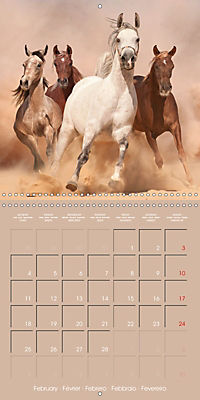 Arabian Horses - The Kings of Desert (Wall Calendar 2019 300 × 300 mm Square) - Produktdetailbild 2