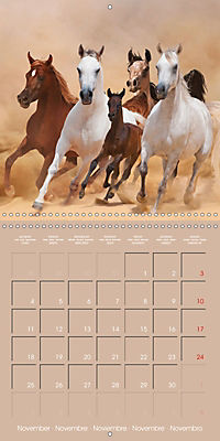 Arabian Horses - The Kings of Desert (Wall Calendar 2019 300 × 300 mm Square) - Produktdetailbild 11