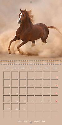 Arabian Horses - The Kings of Desert (Wall Calendar 2019 300 × 300 mm Square) - Produktdetailbild 7