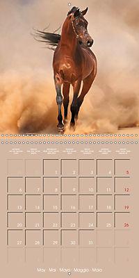 Arabian Horses - The Kings of Desert (Wall Calendar 2019 300 × 300 mm Square) - Produktdetailbild 5