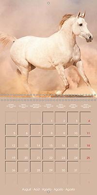 Arabian Horses - The Kings of Desert (Wall Calendar 2019 300 × 300 mm Square) - Produktdetailbild 8