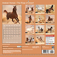 Arabian Horses - The Kings of Desert (Wall Calendar 2019 300 × 300 mm Square) - Produktdetailbild 13