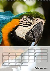 Aras. Der Papageien-Planer (Wandkalender 2019 DIN A3 hoch) - Produktdetailbild 2