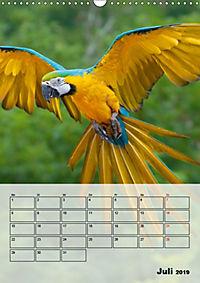 Aras. Der Papageien-Planer (Wandkalender 2019 DIN A3 hoch) - Produktdetailbild 7
