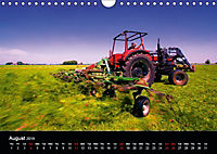 Arcadian Dreams Revisited Traditional farmers of Holland 2019 (Wall Calendar 2019 DIN A4 Landscape) - Produktdetailbild 8